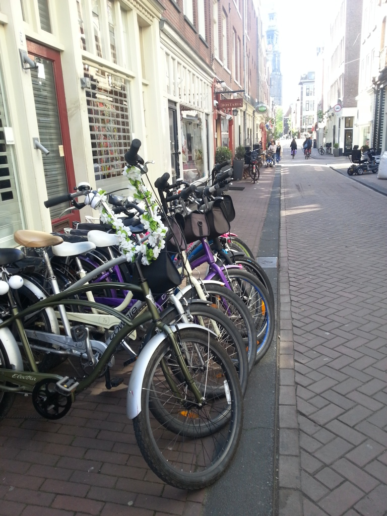 Our tour bikes